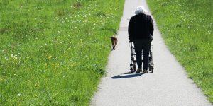 granny und hund